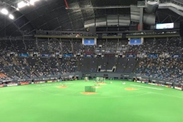 プロスピ2019 北海道日ハムVS東京ヤクルト 観戦試合応援歌付き